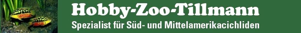 Hobbyzoo Tillmann - Ihr Spezialist für Buntbarsche aus Mittel- und Südmerika in Duisburg